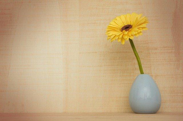 איך לבחור כד לצמחיה מלאכותית?
